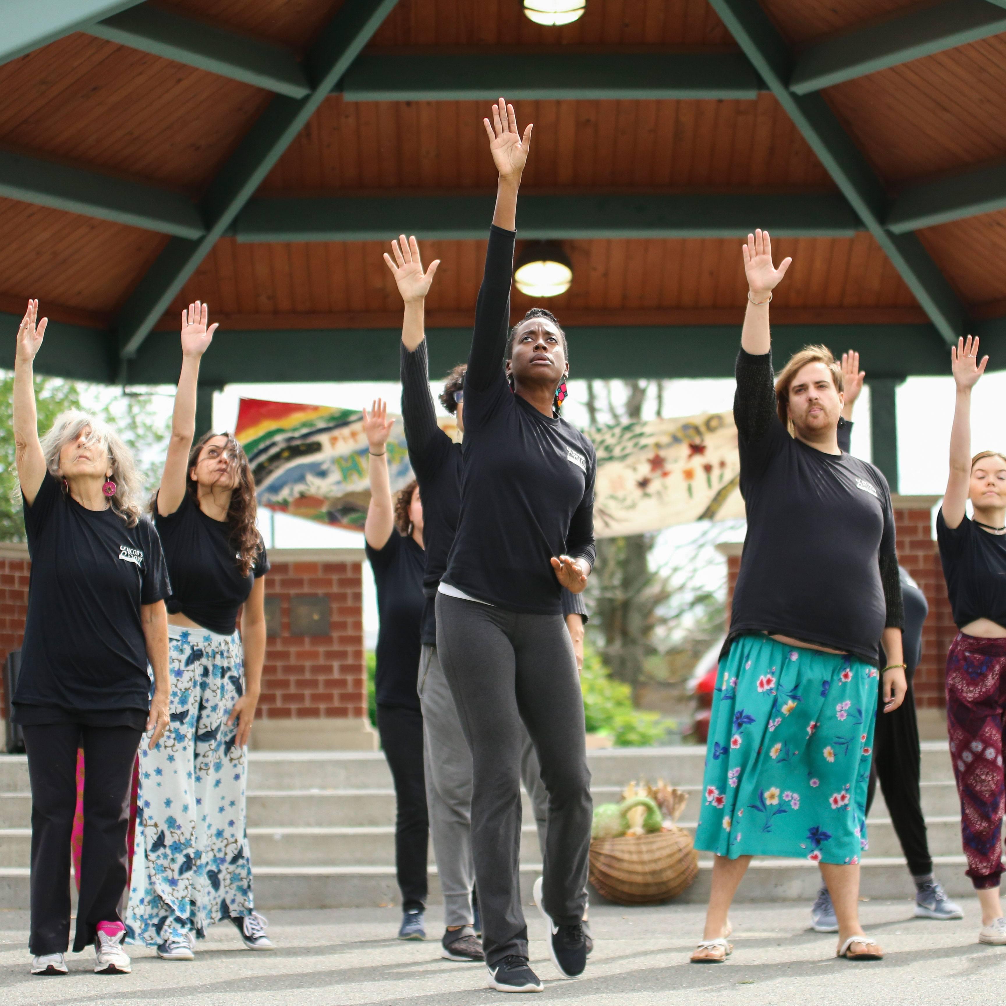 <em>Pittsfield Moves!</em> Community dancers performing at Harvest of Hope; photo Noor Eemaan